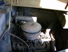 egine compartment