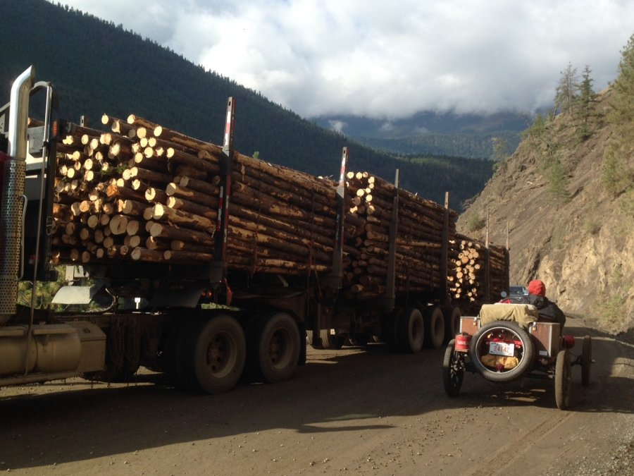 D3 Logging truck.jpg
